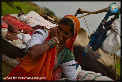 Marwari tribes bundi nomads