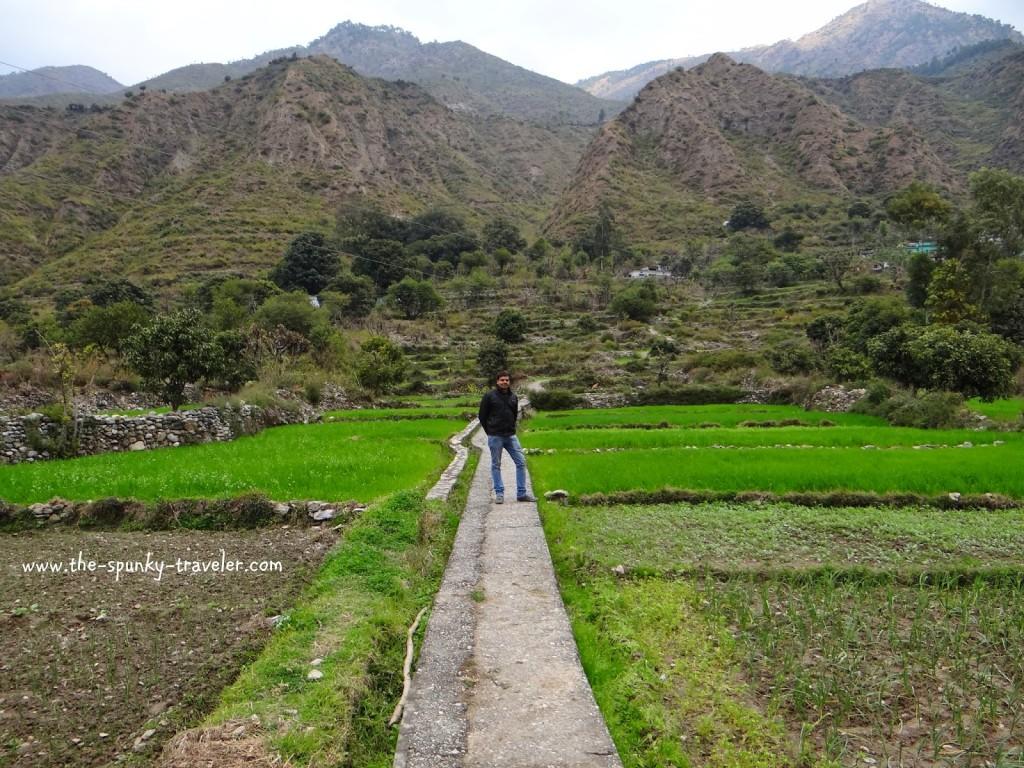 Homestay kumaon Uttarakhand