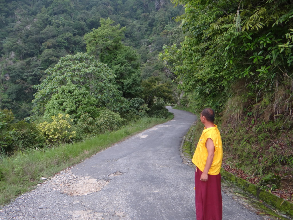 Walk with the monk